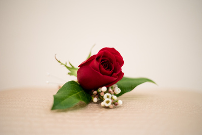 Groom's boutonniere with red rose and baby's breath flowers by Lovely Stems Floral of Oceanside, CA.