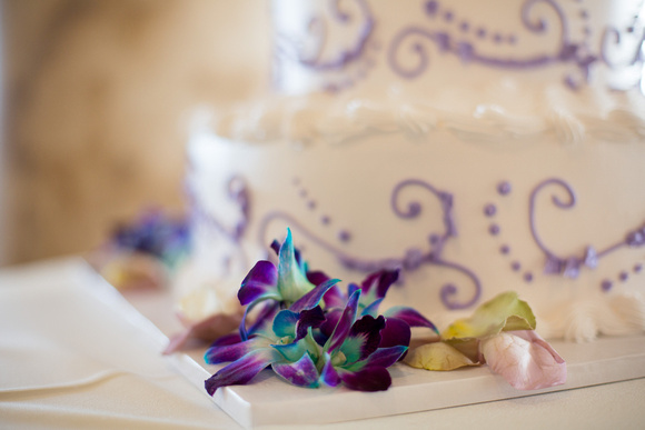 Bess & Braedon Wedding - HoffmanPhotoVideo-285