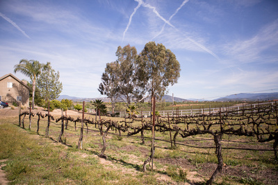 Private residence in Temecula with private attached vineyard